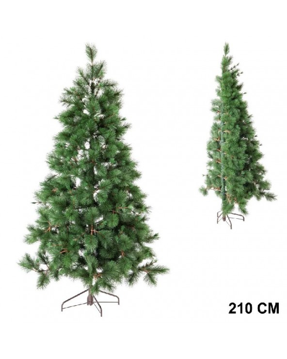 Medio árbol 585 ramas 210...