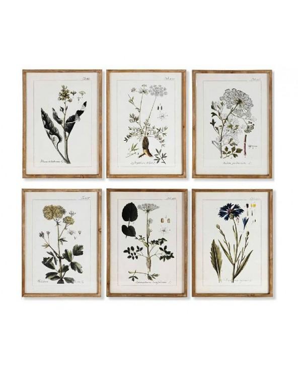 Set 6 cuadros George flores...