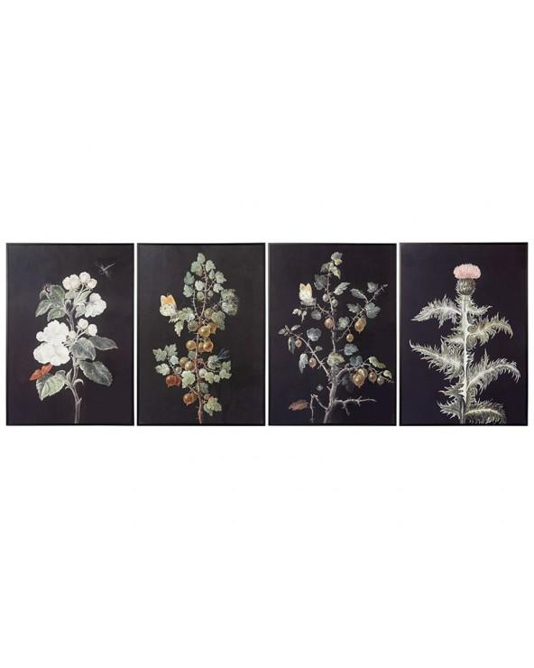 Set 4 cuadros plantas...