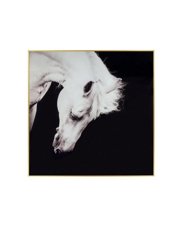 Cuadro caballo blanco...