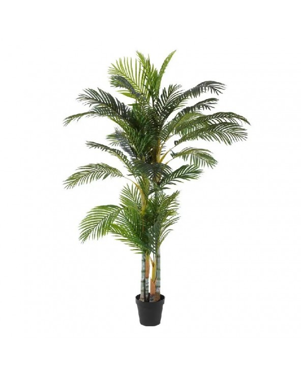 Planta Palmera Areca PVC...